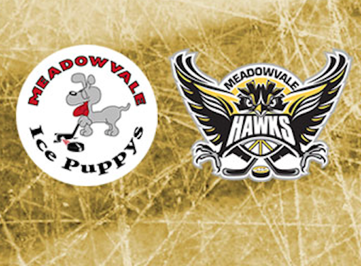 Ice Puppy & Hawk Practice Schedule Now available